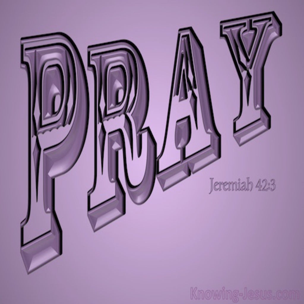Jeremiah 42:3 Pray That The Lord May Show Us The Way (pink)