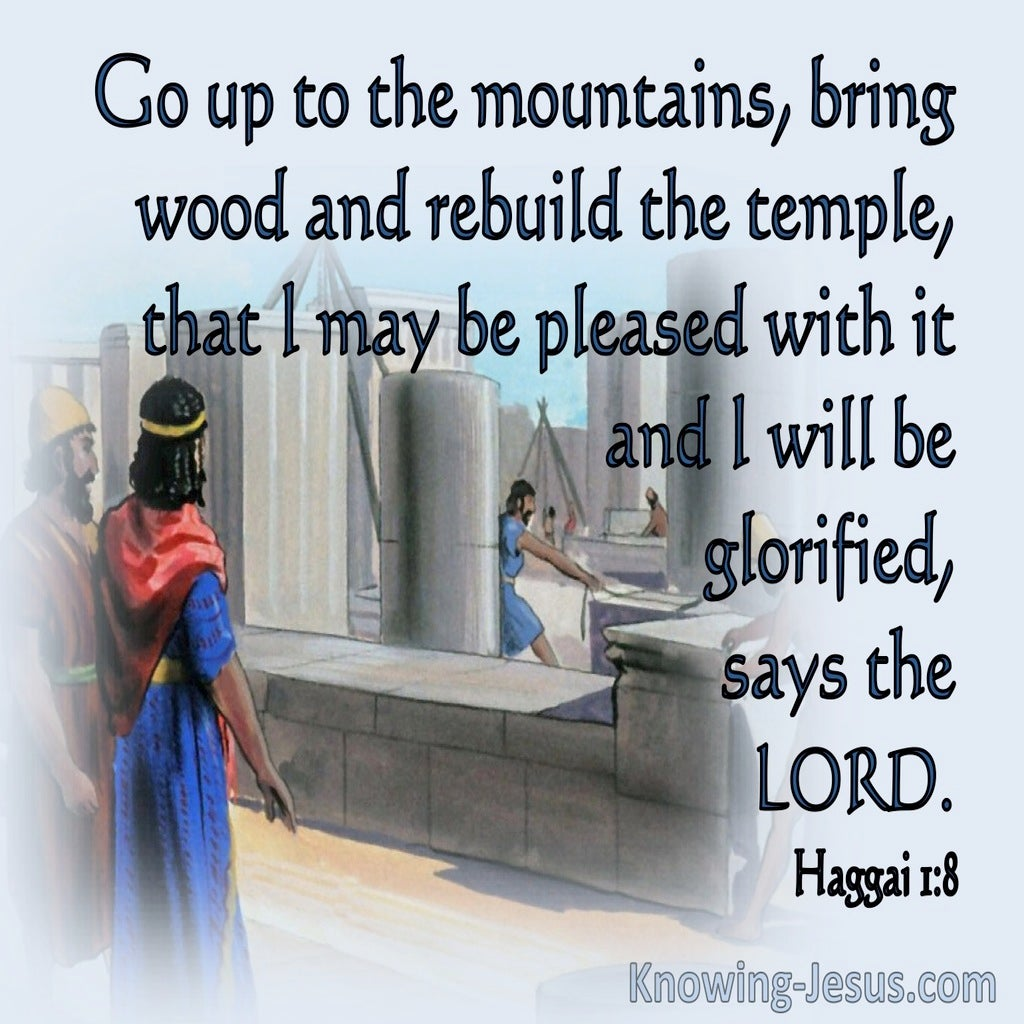 Haggai 1:8 Go Up To The Mountains (blue)
