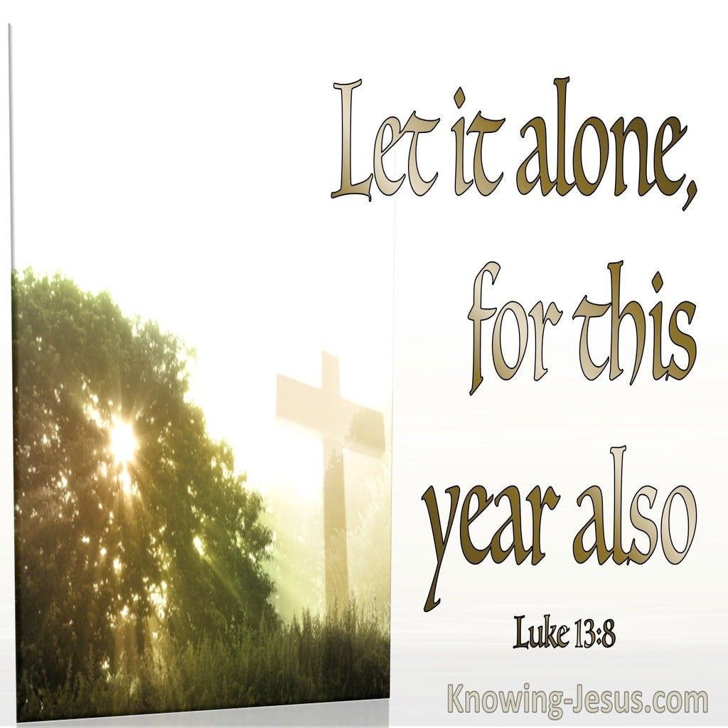 Luke 13:8 Let It Alone For This Year Also (white)