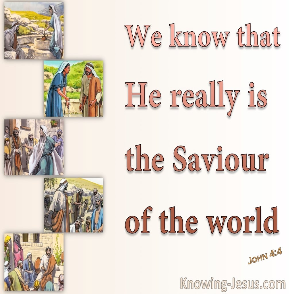 John 4:42 We Know He Is The Saviour (brown)