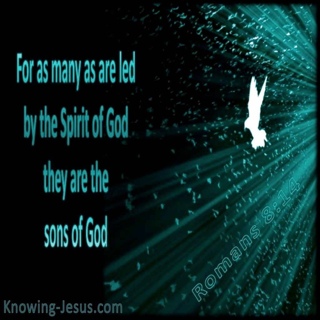 Romans 8:14 Led By The Spirit (sage)