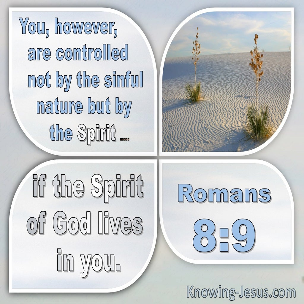 Romans 8:9 Not Controlled By Sinful Nature But The Spirit (windows)10:01