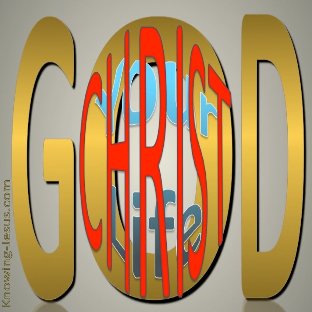 Christocentric Concentration (devotional) (gold) - Colossians 3-3