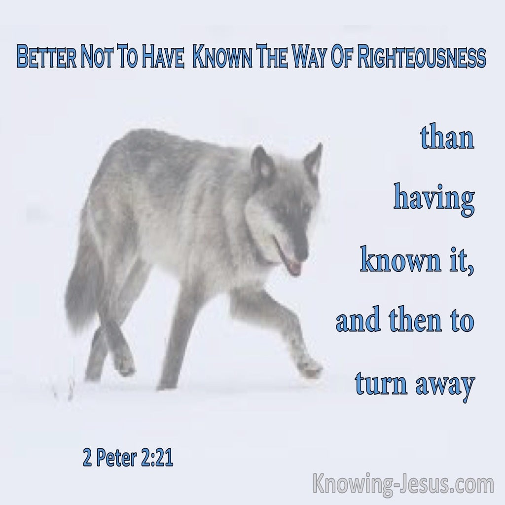 2 Peter 2:21 Better Not To Have Known Way Of Righteousness (blue)