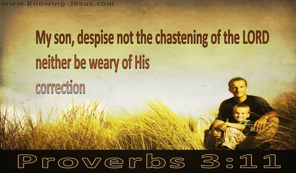 Proverbs 3:11 Do Not Despise The Lord's Correction (brown)