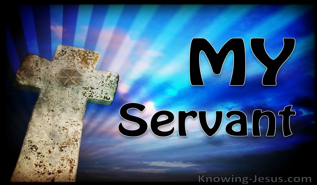 Job 1:8 My Servant (devotional)01:28 (blue)