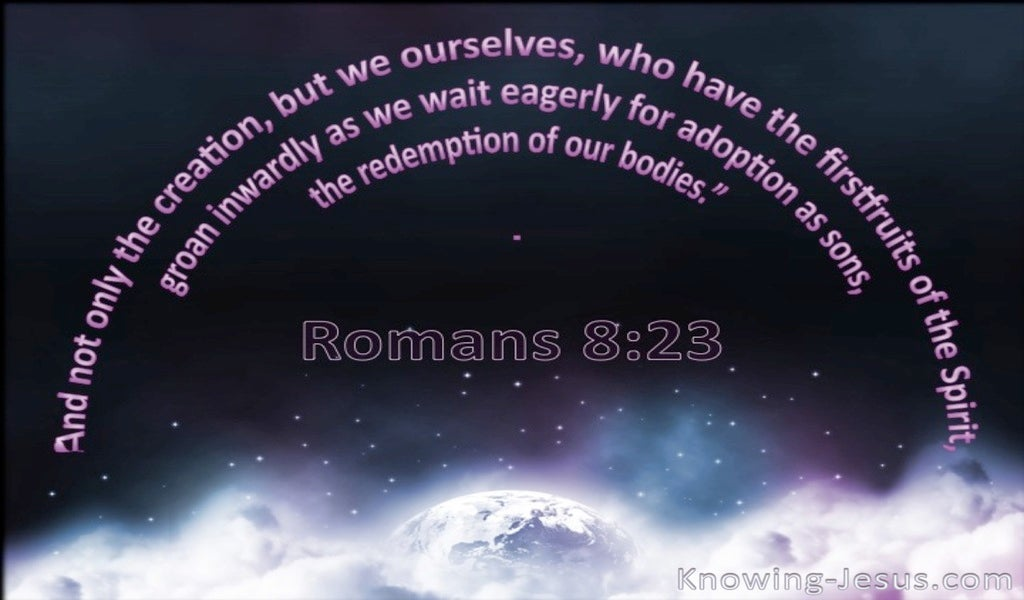 Romans 8:23 All Creation Is Subject To Futility (black)