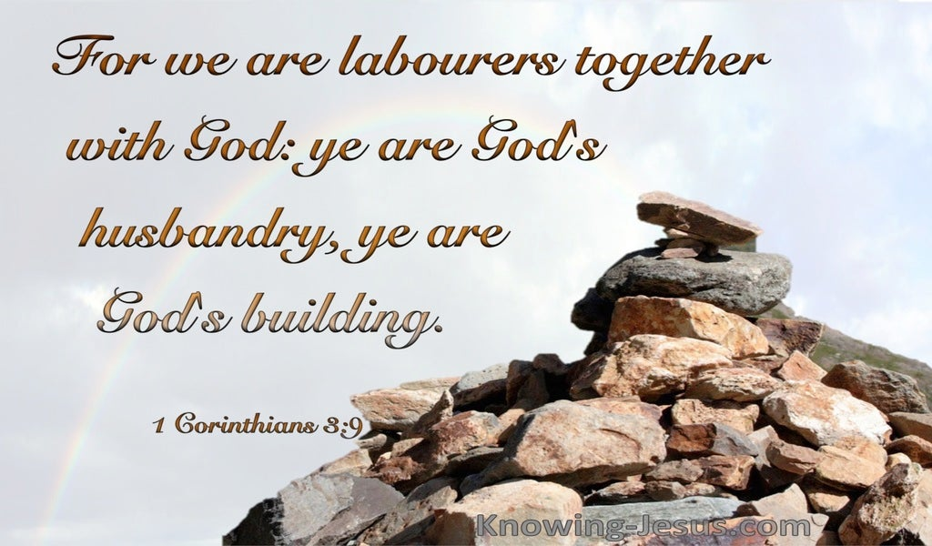 1 Corinthians 3:9 We Are God's Building (brown)
