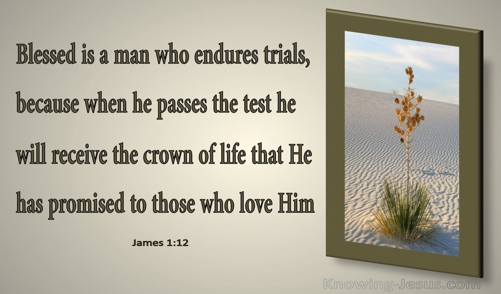 James 1:12 Blessed Is The Man The Endures Trials (gray)