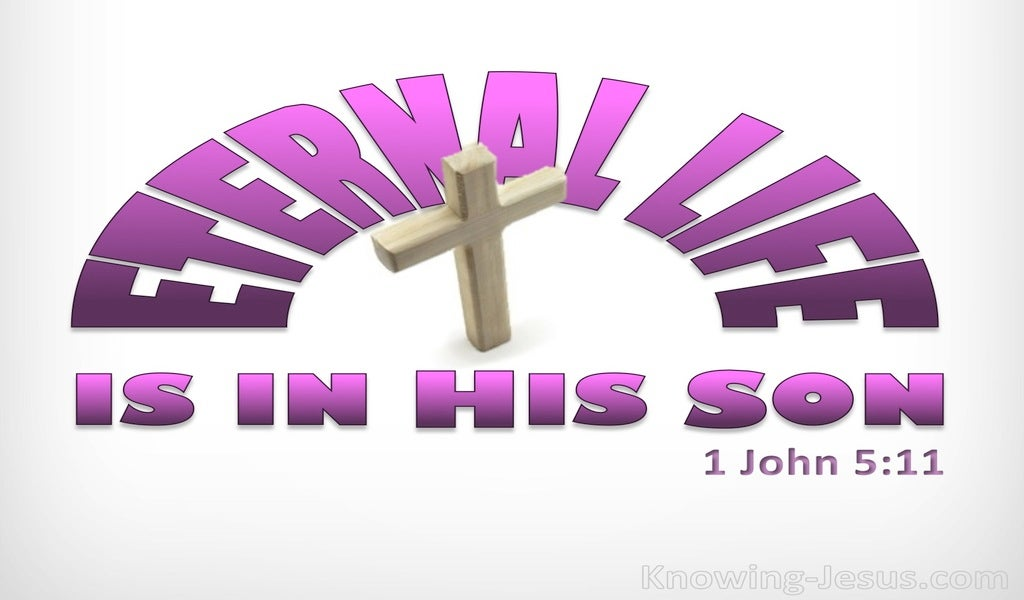 1 John 5:11 This Life Is In His Son (pink)