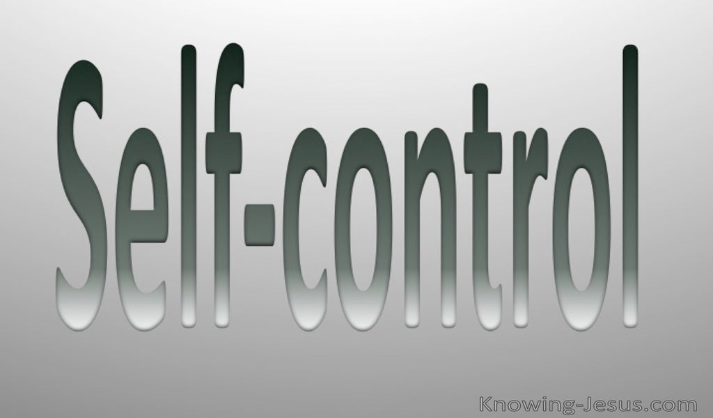 Galatians 5:23  Fruit Of The Spirit Is Self Control (gray)