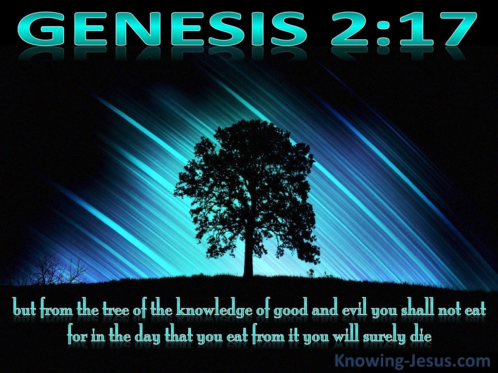 Genesis 2:17 Tree Of Knowledge Of Good And Evil (black)