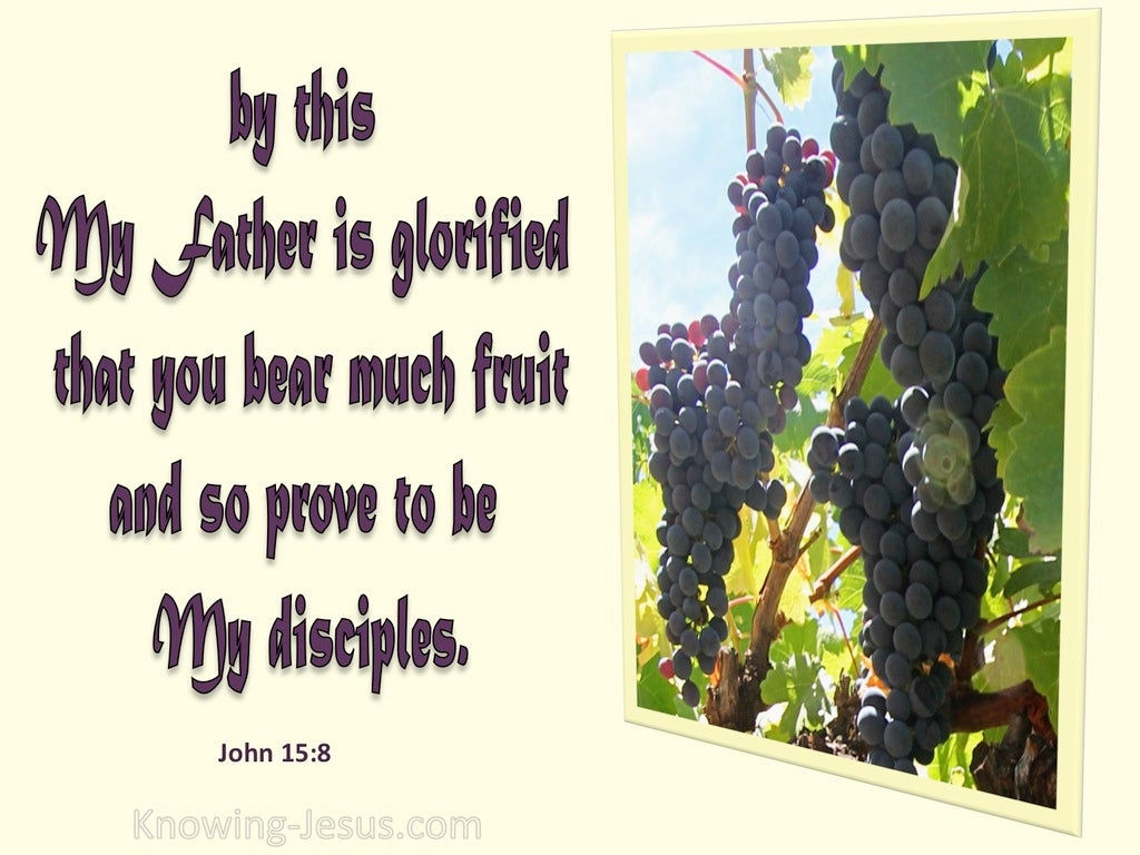 John 15:8 My Father Is Glorified When You Bear Much Fruit (yellow)