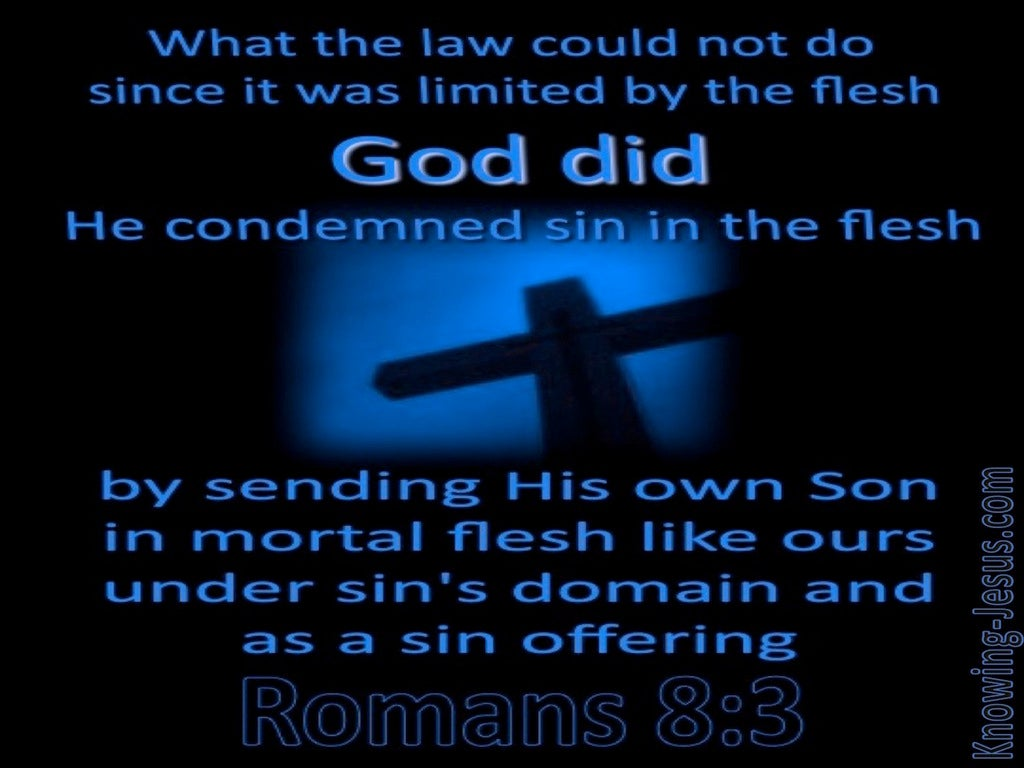 Romans 8:3 He Condemned Sin In The Flesh (blue)