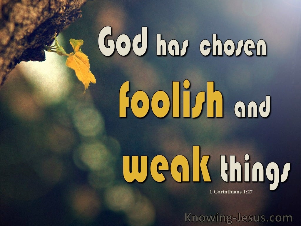 1 Corinthians 1:27 God Chose Foolish and Weak Things (brown)