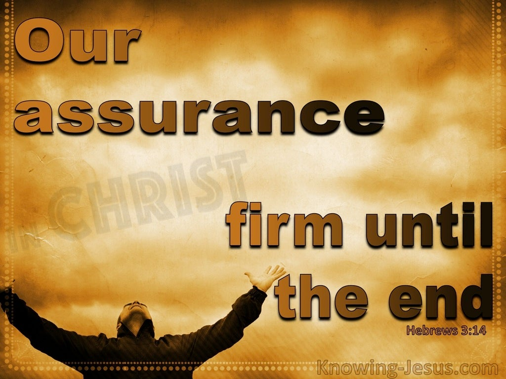Hebrews 3:14 Our Assurance Firm To The End (brown)