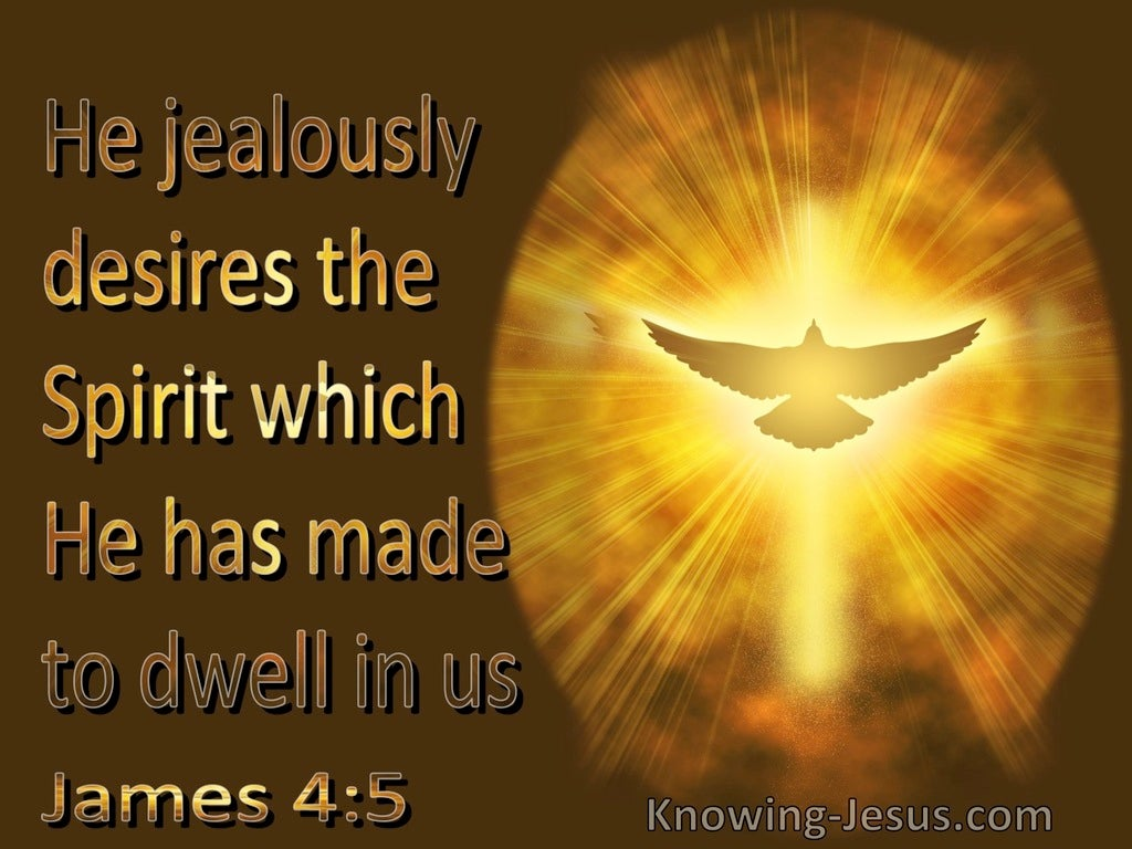 James 4:5 He Jealously Desires The Spirit Which He Has Made To Dwell In Us (brown)