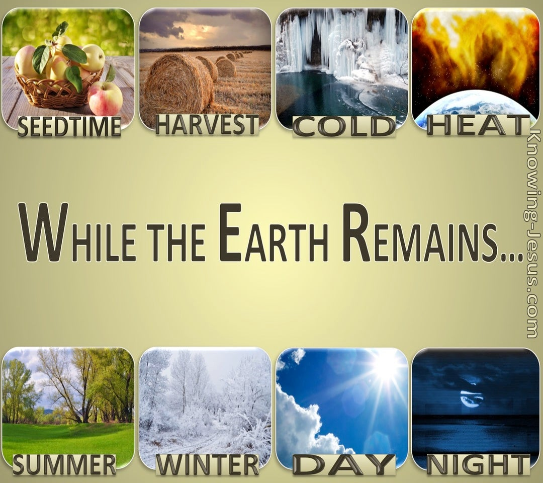 Genesis 8:22 While The Earth Remains (gold)