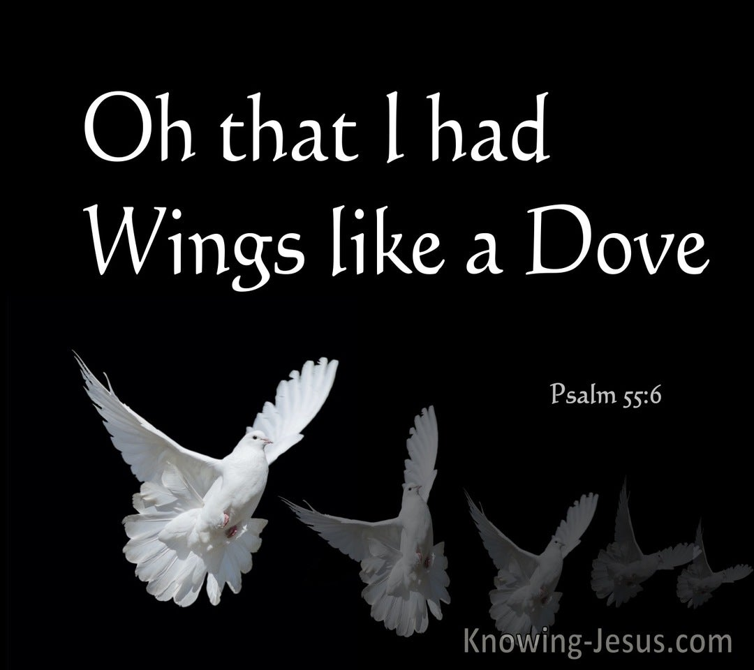 Psalm 55:6 Oh That I Had Wings Like A Dove (white)
