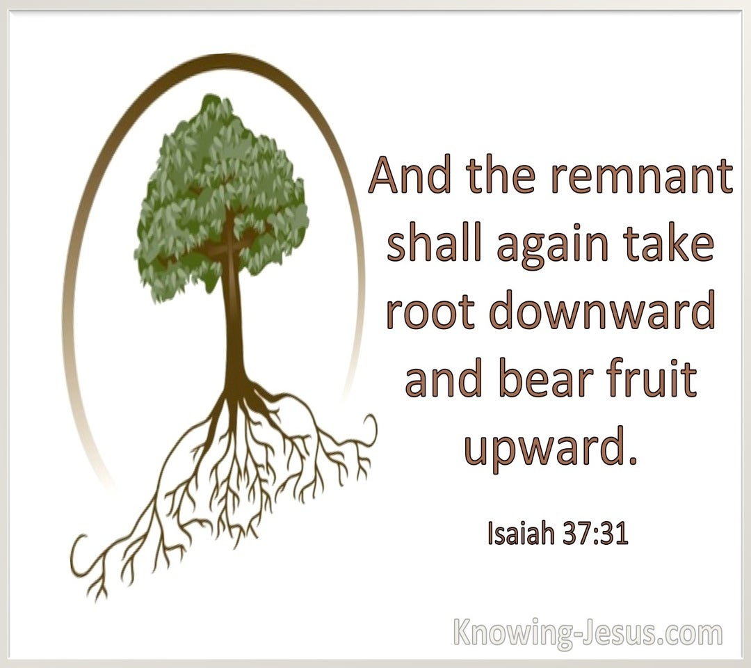 Isaiah 37:31 The Remnant Shall Take Root Downward And Bear Fruit Upward (windows)01:05