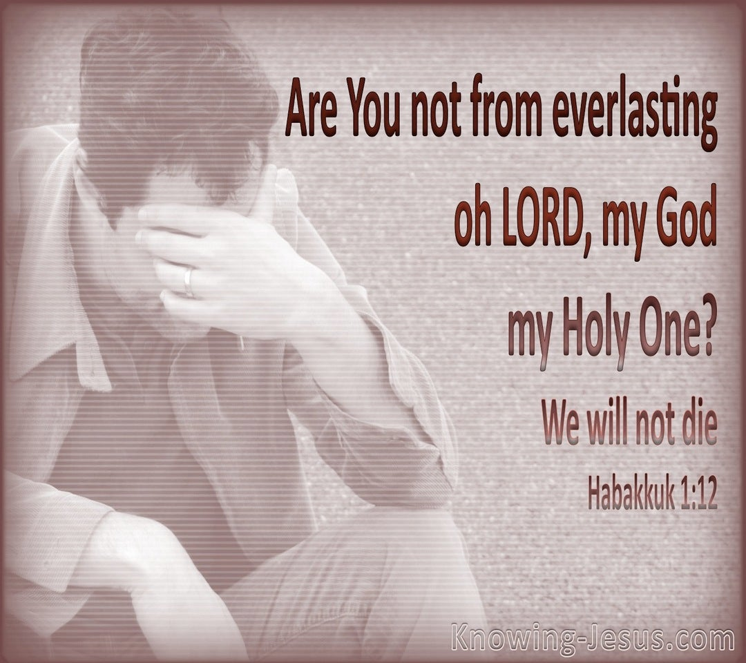 Habakkuk 1:12 You Are the Everlasting God (gray)
