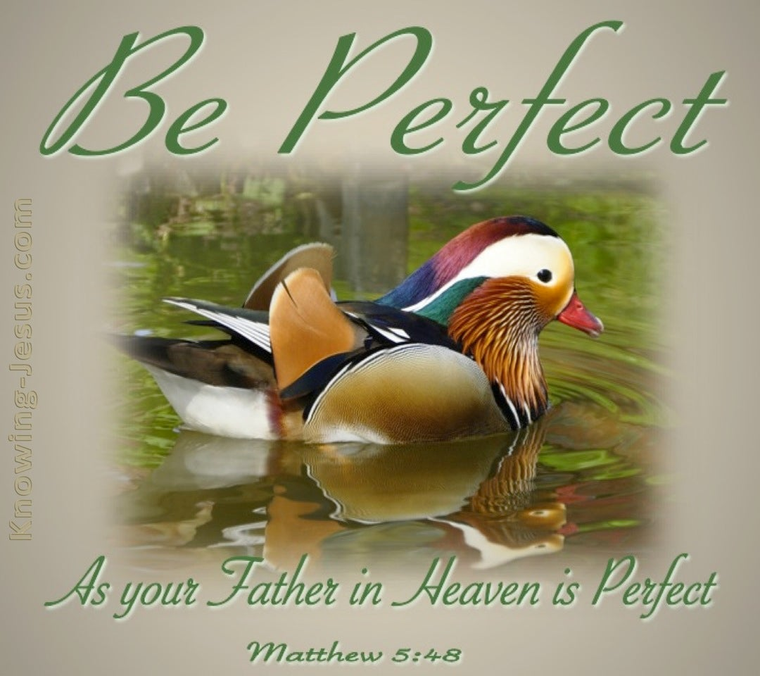 Matthew 5:48 Be Ye Perfect (green)