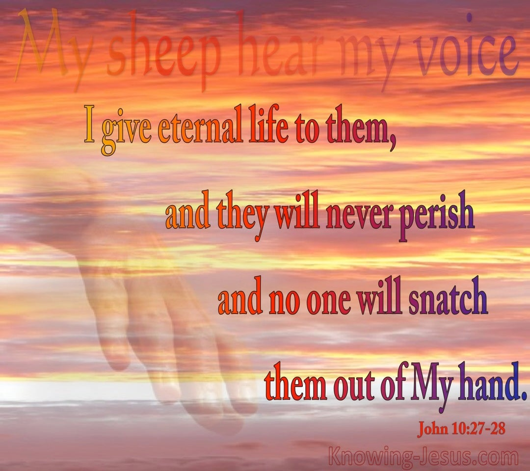 John 10:28 No One Will Snatch Them Out Of My Hand (red)