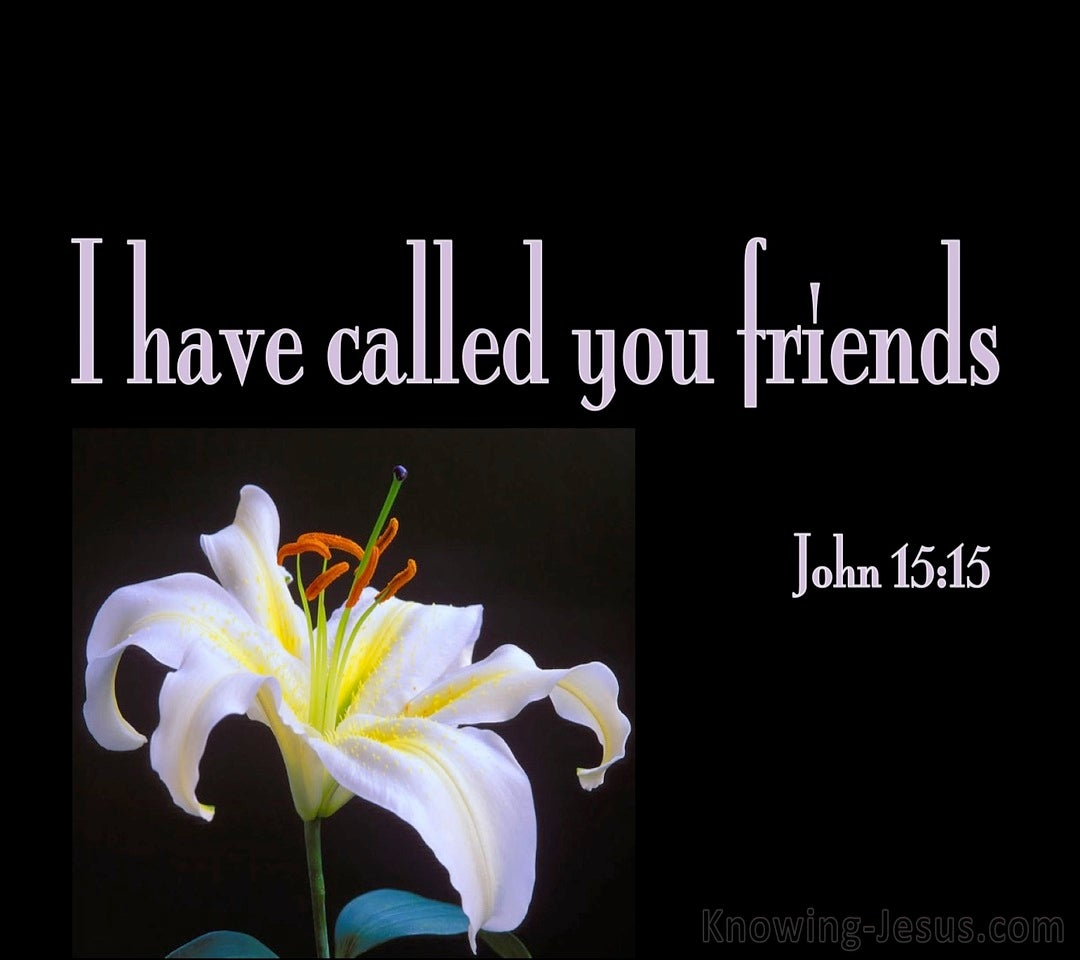John 15:15 I Have Called Your Friends (black)