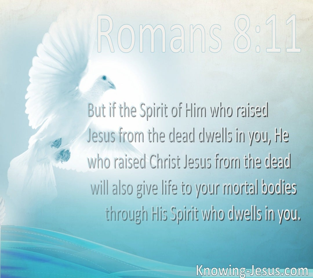 Romans 8:11 He Who Raised Christ Dwells In You (white)