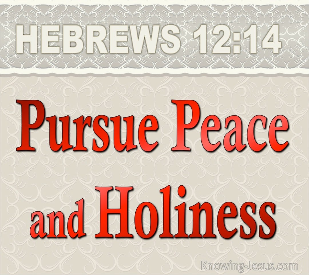 Hebrews 12:14 Pursue Peace And Holiness (red)