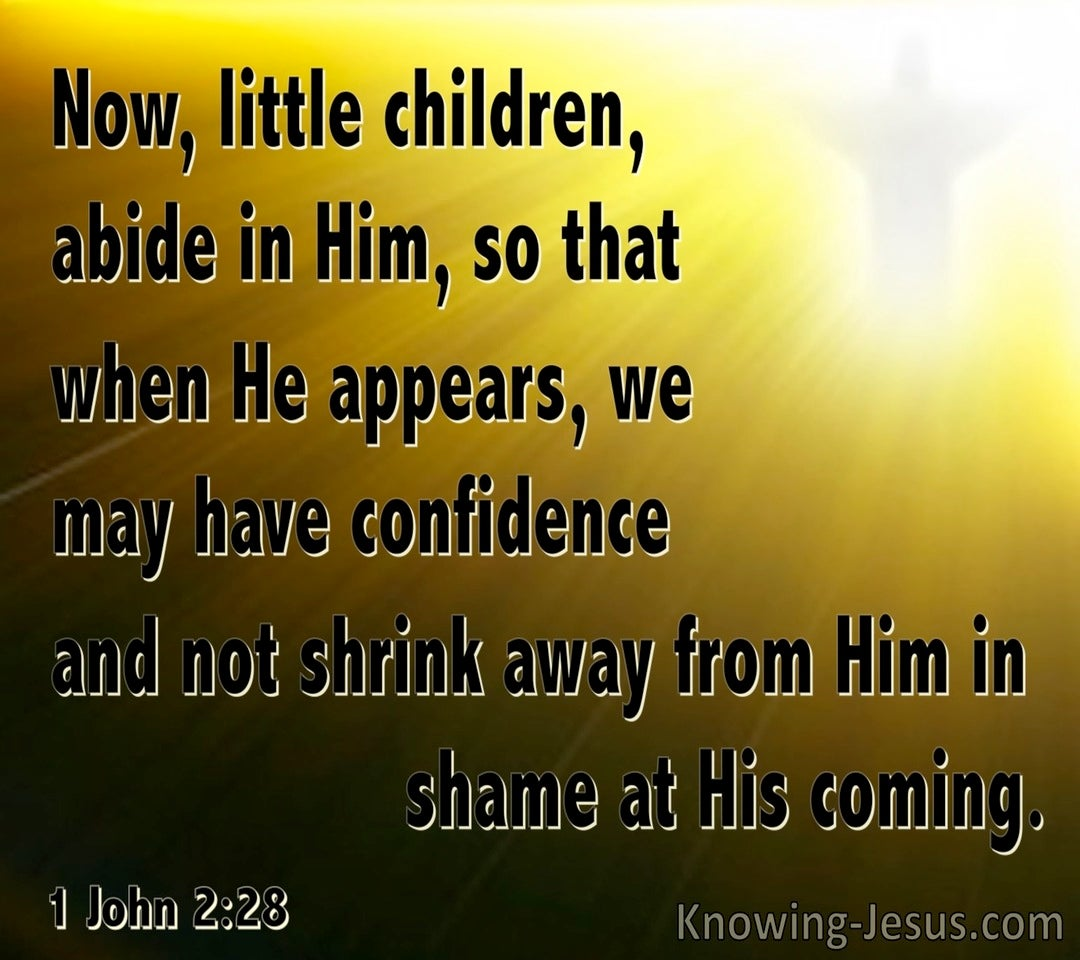 1 John 2:28 Little Children, Abide In Him (brown)