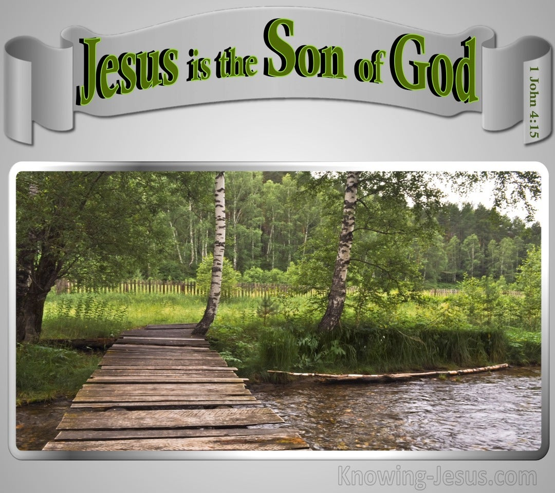 1 John 4:15 Jesus Is The Son Of God (gray)