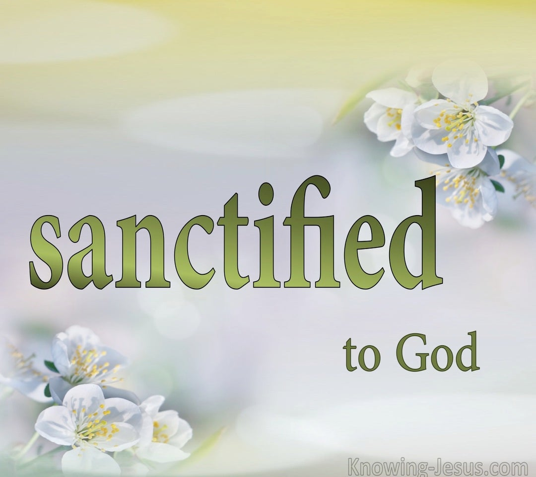 What About Sanctification (devotional) (white)