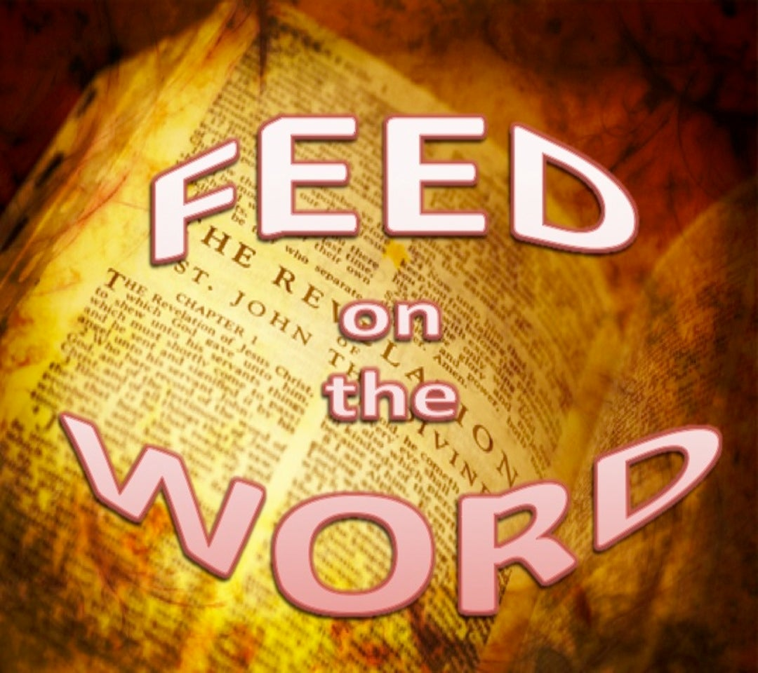 Feed On The Word (yellow)