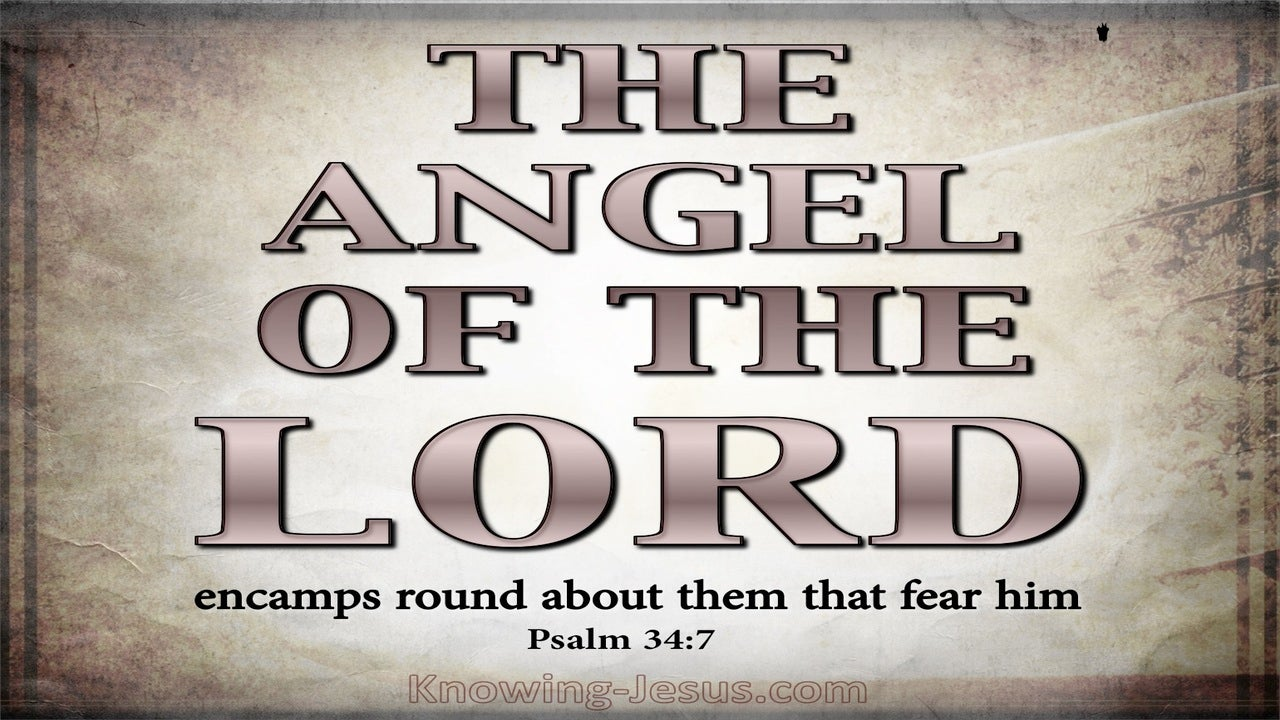 Psalm 34:7 The Angel Of The Lord Encamps (pink)