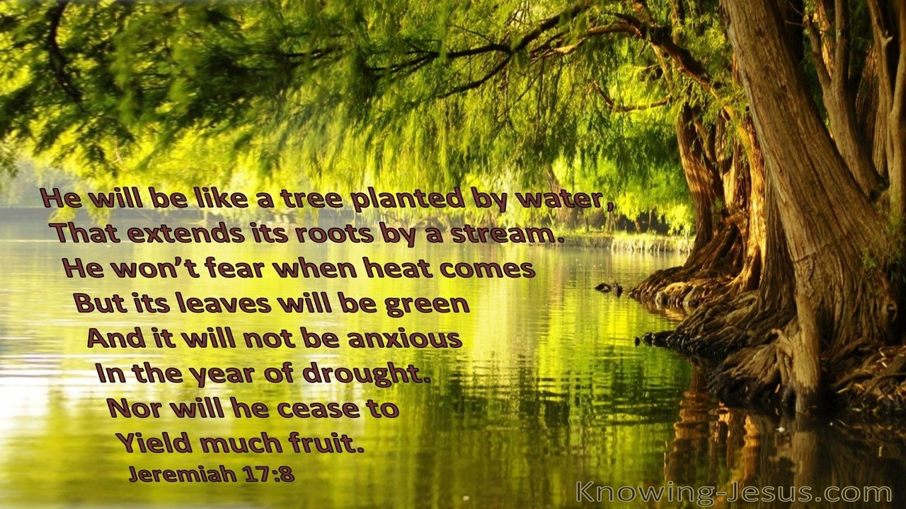 Jeremiah 17:8 He Will Be Like A Tree Planted (brown)