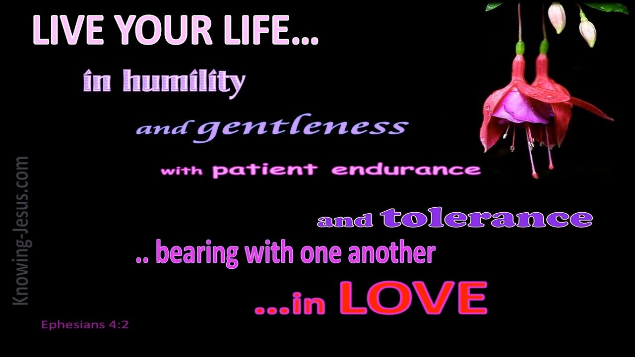 Ephesians 4:2 Live In Humility, Gentleness, Patience And Love (pink)