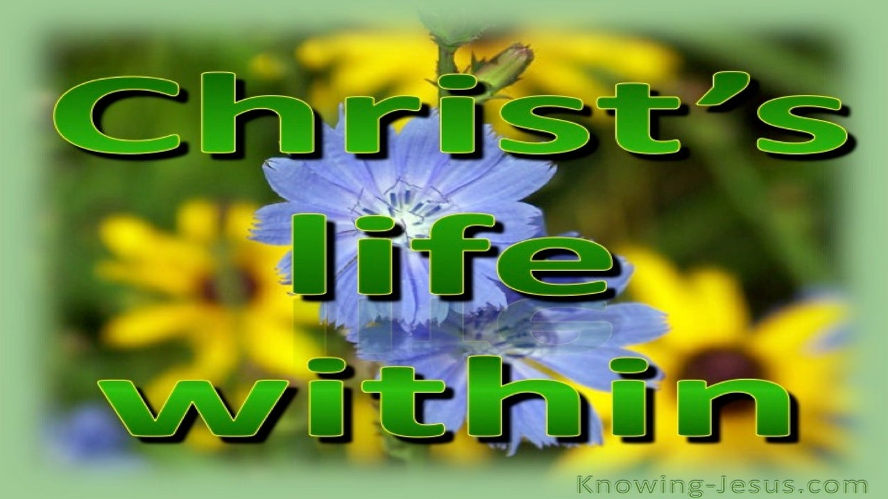 Colossians 3:4  Christ Who Is Our Life (green)