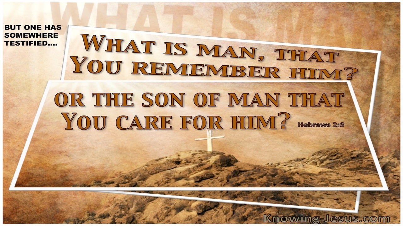 Hebrews 2:6 What Is Man And The Son Of Man (brown)