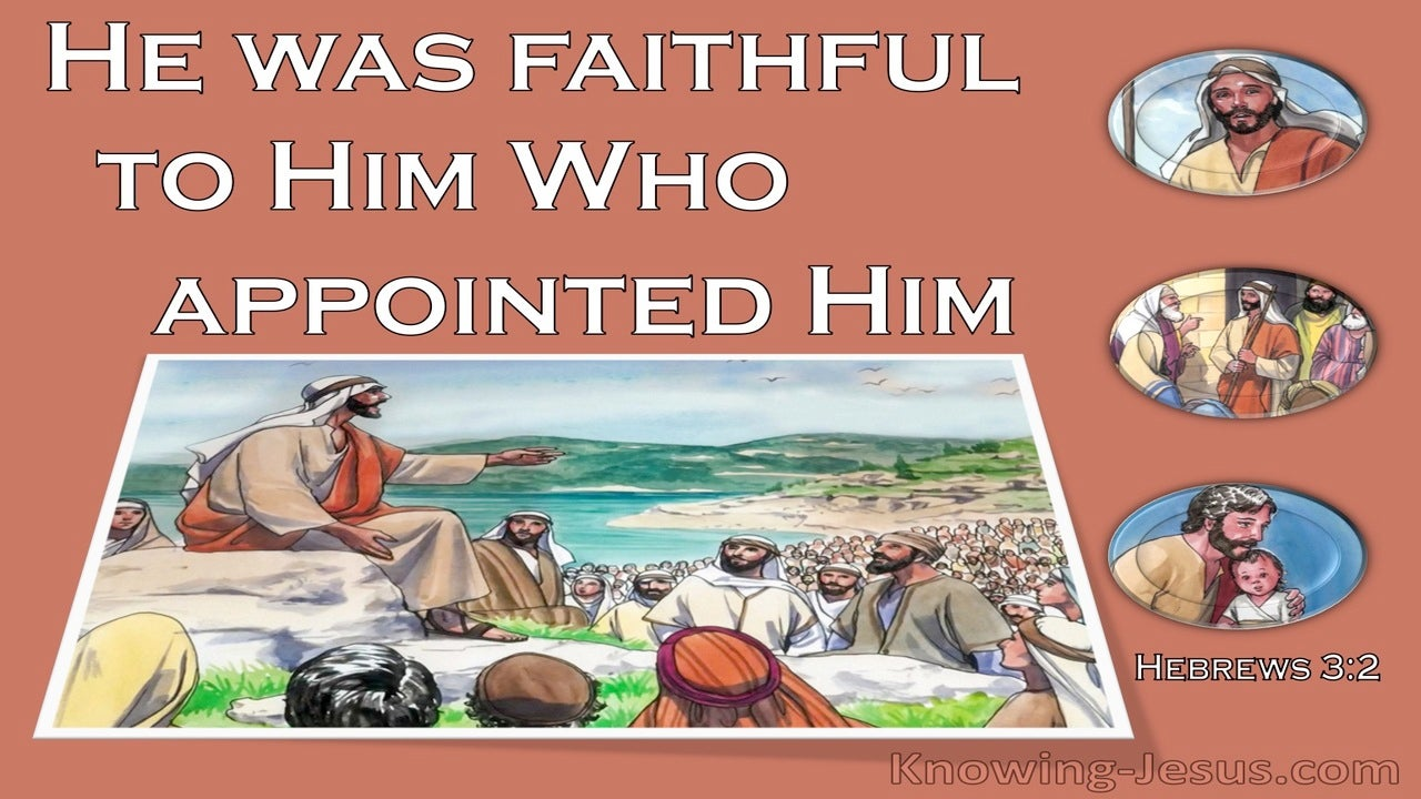 Hebrews 3:2 He Was Faithful Like Moses (brown)