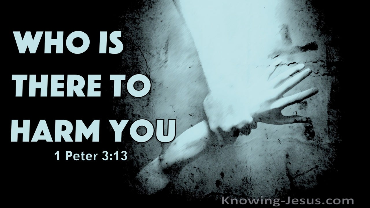 1 Peter 3:13 Who Is There To Harm You (black)