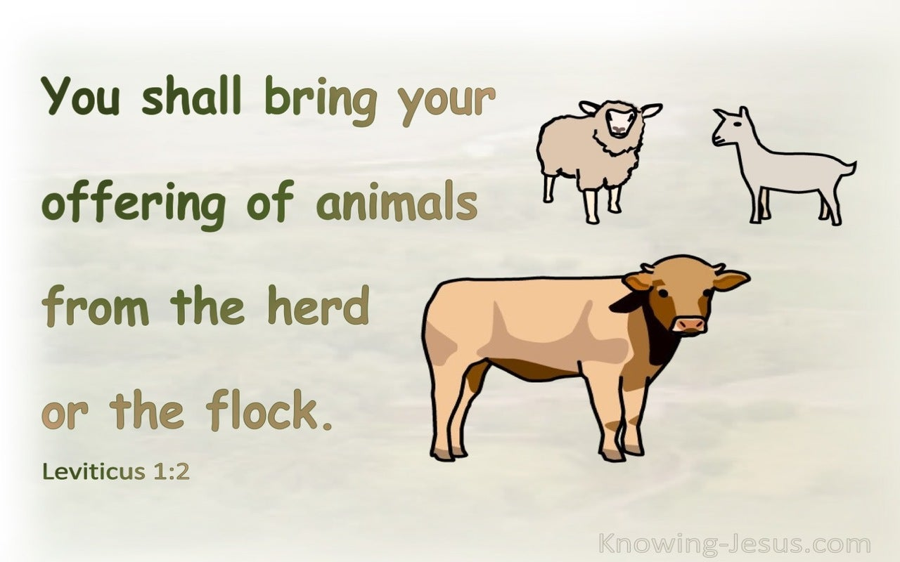 Leviticus 1:2 Bring Your Offering Of Animals From The Herd Or The Flock (green)