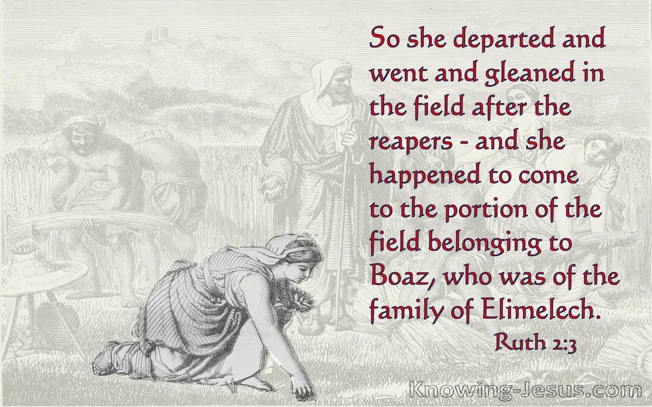 Ruth 2:3  Ruth Departed And Gleaned In The Field (red)