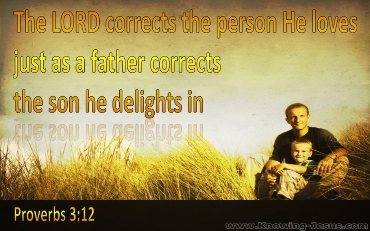 Proverbs 3:12 God Corrects Us (yellow)