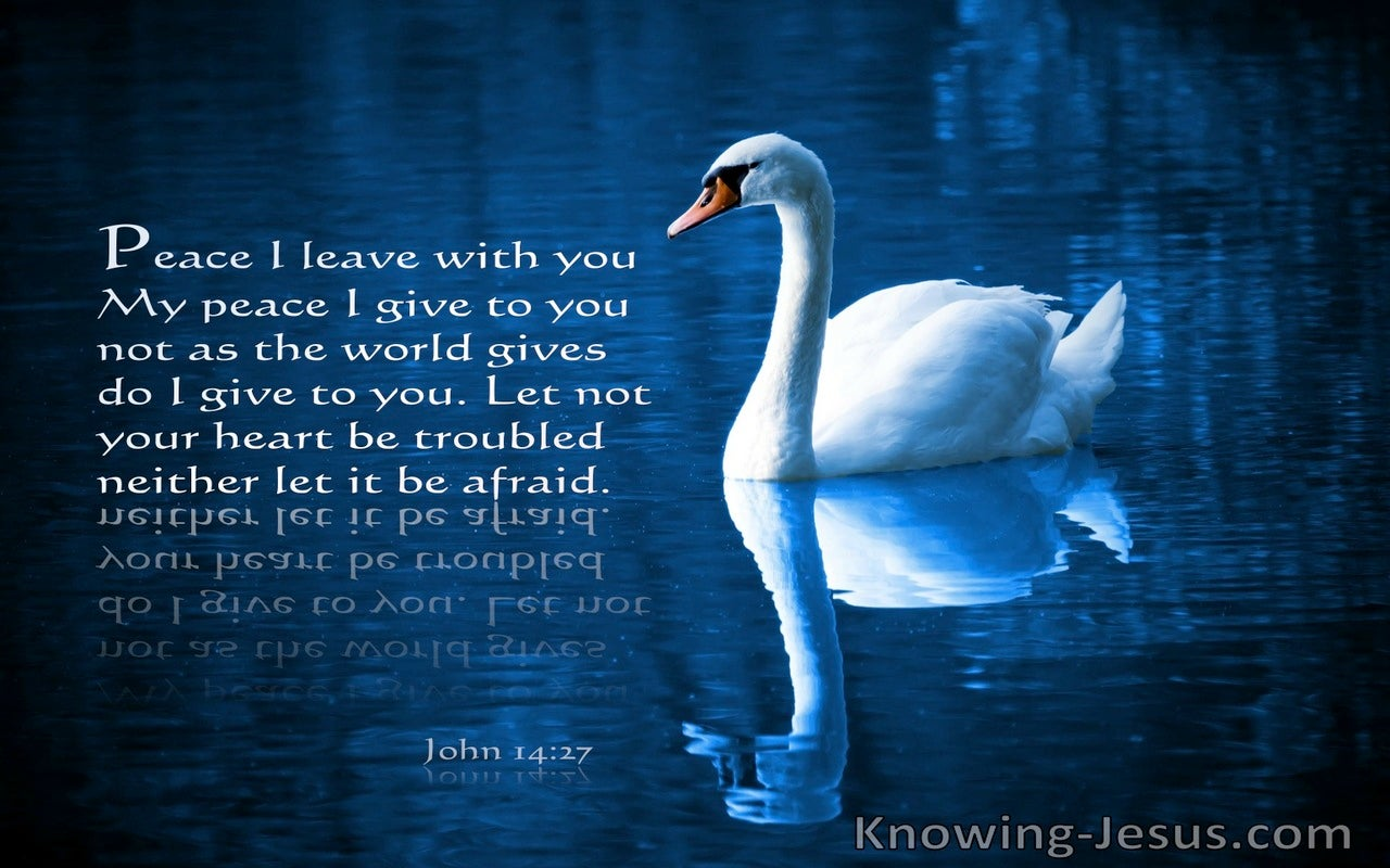 John 14:27 Let Not Your Heart Be Troubles Peace I Leave With You My Peae I Give To You (blue)