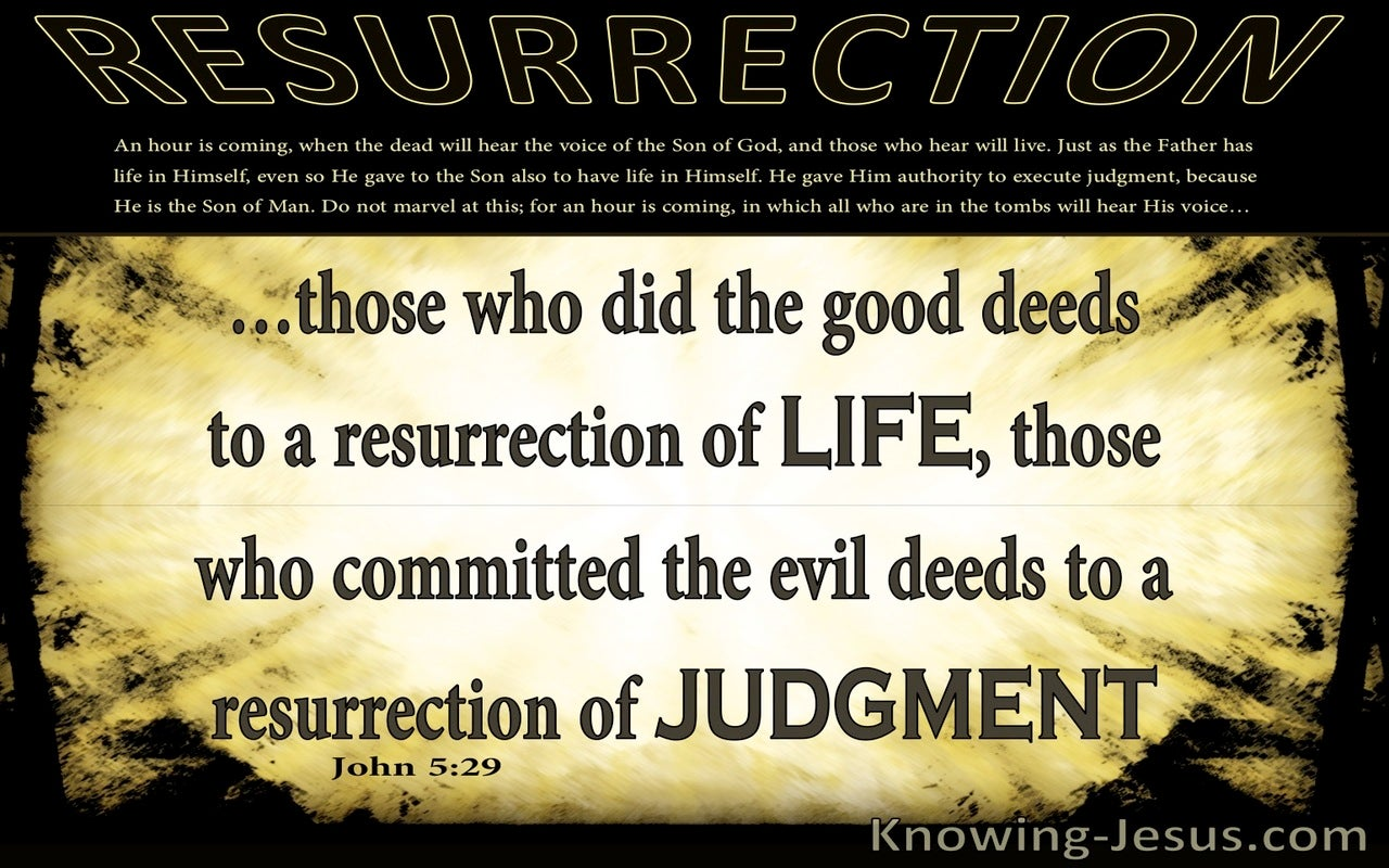 John 5:29 Life Or Judgement (yellow)