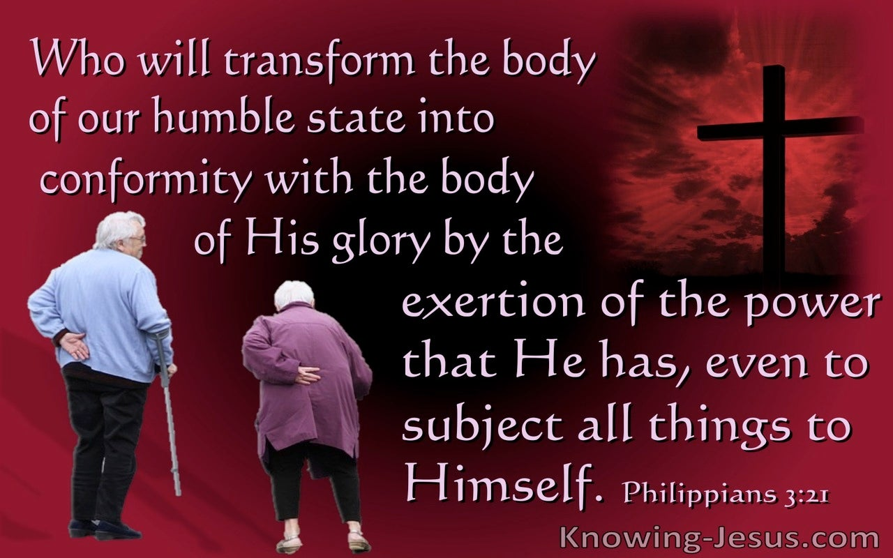 Philippians 3:21 He  Will Transform Our Lowely Body (pink)