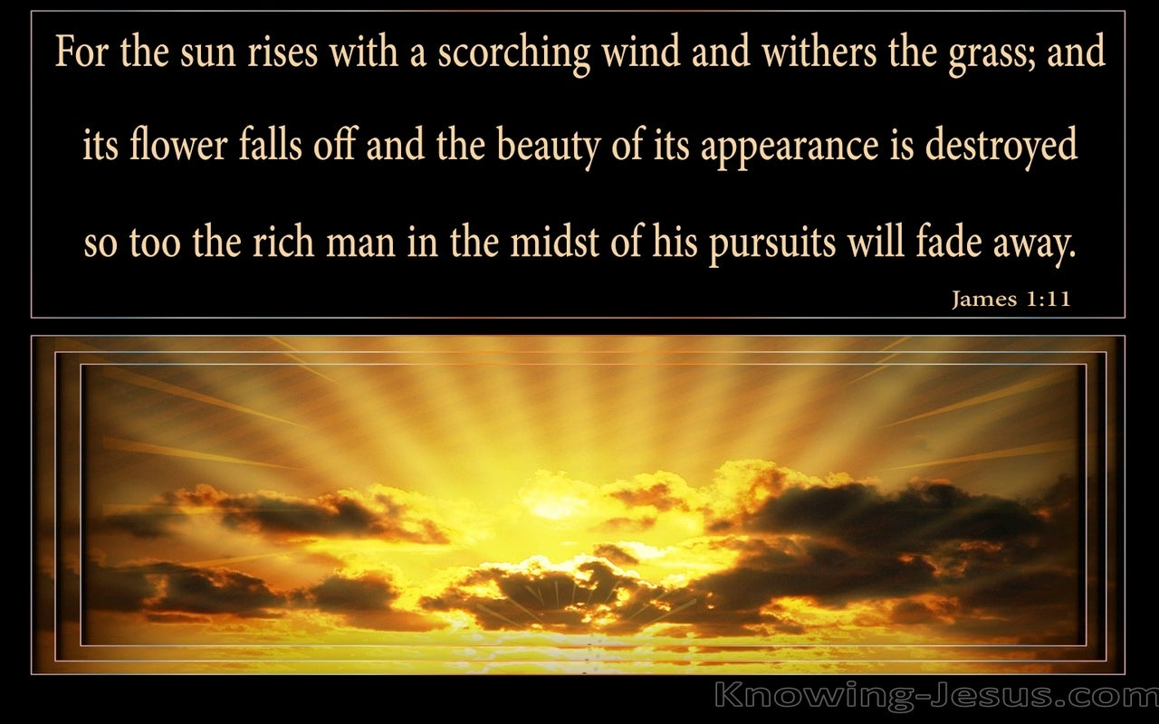 James 1:11 The Rich Man Will Fade Away (gold)