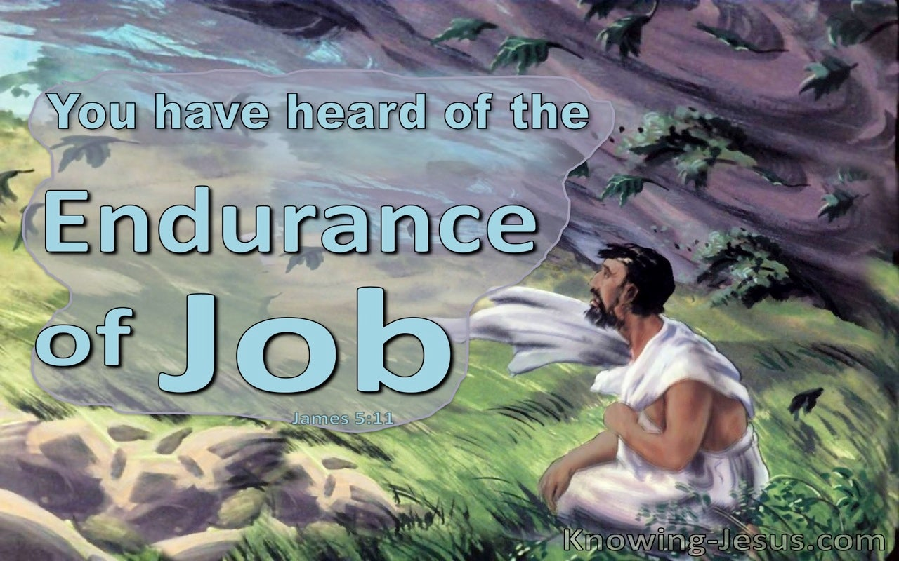 James 5:11 The Endurance Of Job (blue)