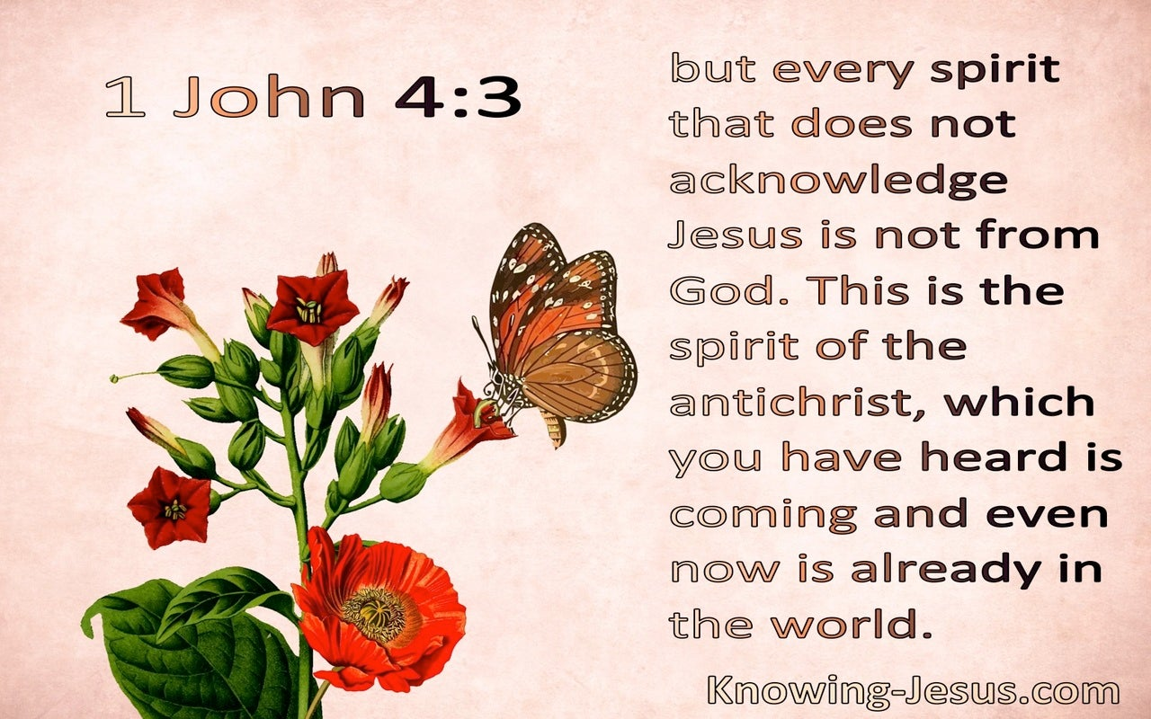 1 John 4:3 This Is The Spirit Of The Antichrist (pink)